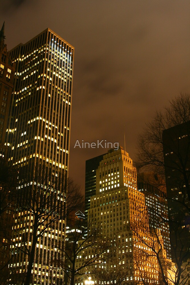 View from central park by Aine King
