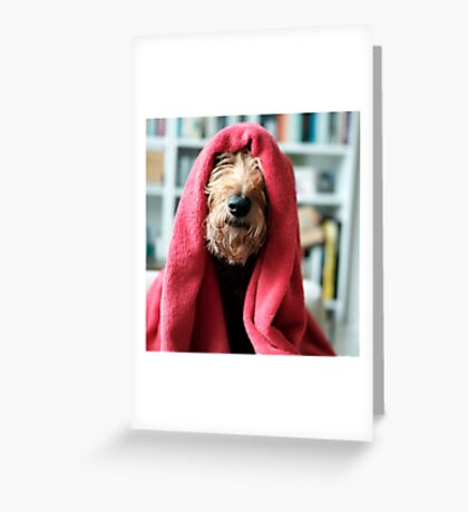 In The Red Greeting Card