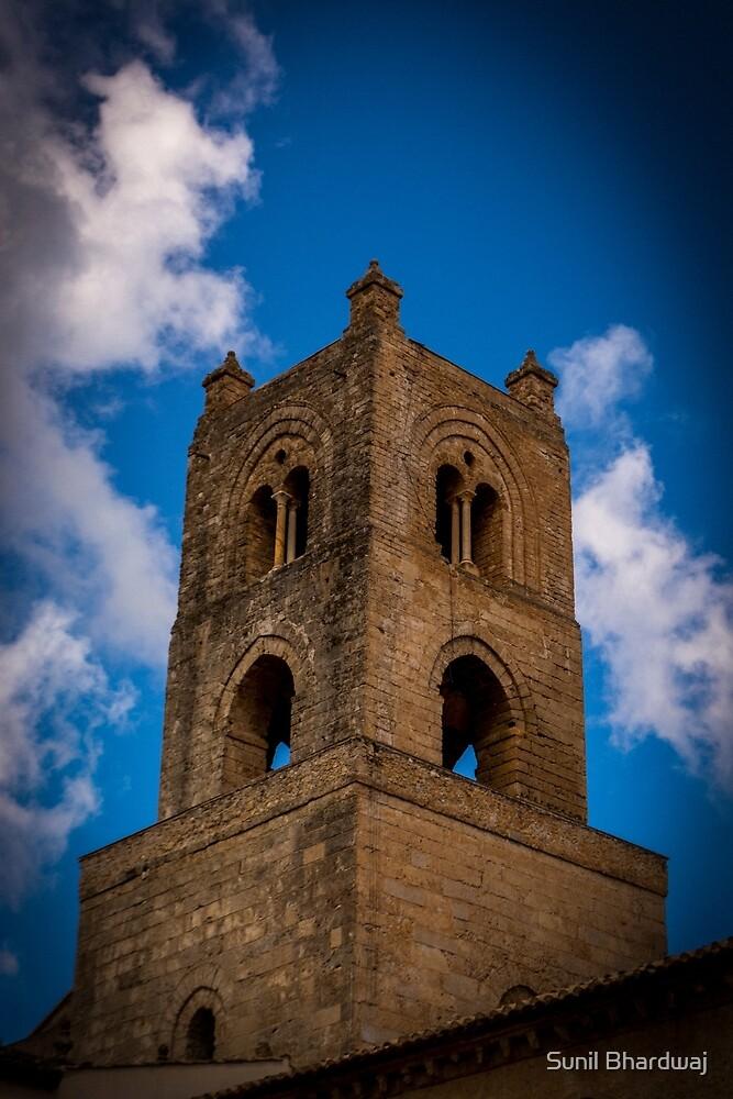 Tower by Sunil Bhardwaj