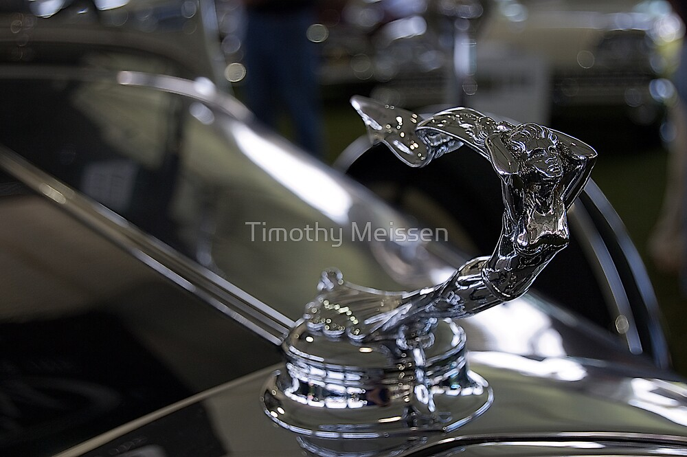 1931 Cadillac V16 Sport Phaeton by Timothy Meissen