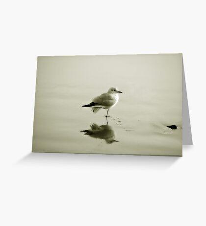 Bird reflection Greeting Card
