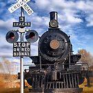 """Railroad Crossing"" by Colette  Larson"