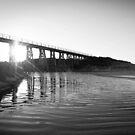 Bridge Flare by WendyJC