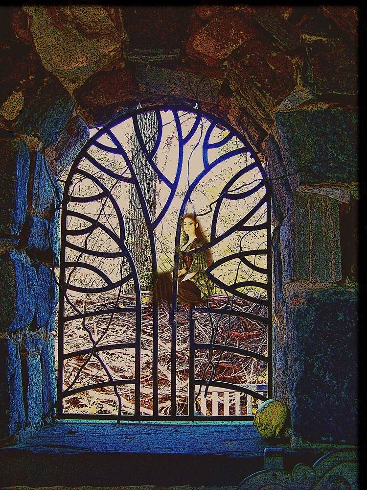Through the window into the Night by Judi Taylor