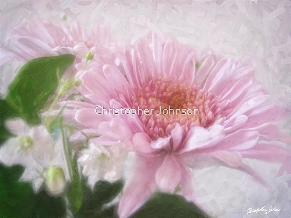 Pink Chrysanthemums 4 by Christopher Johnson