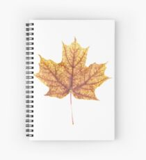 Gold Autumn Maple Leaf Spiral Notebook