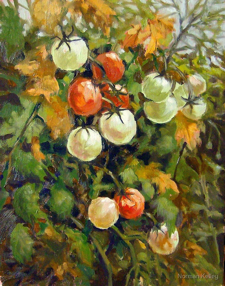 Cherry Tomatoes by Norman Kelley