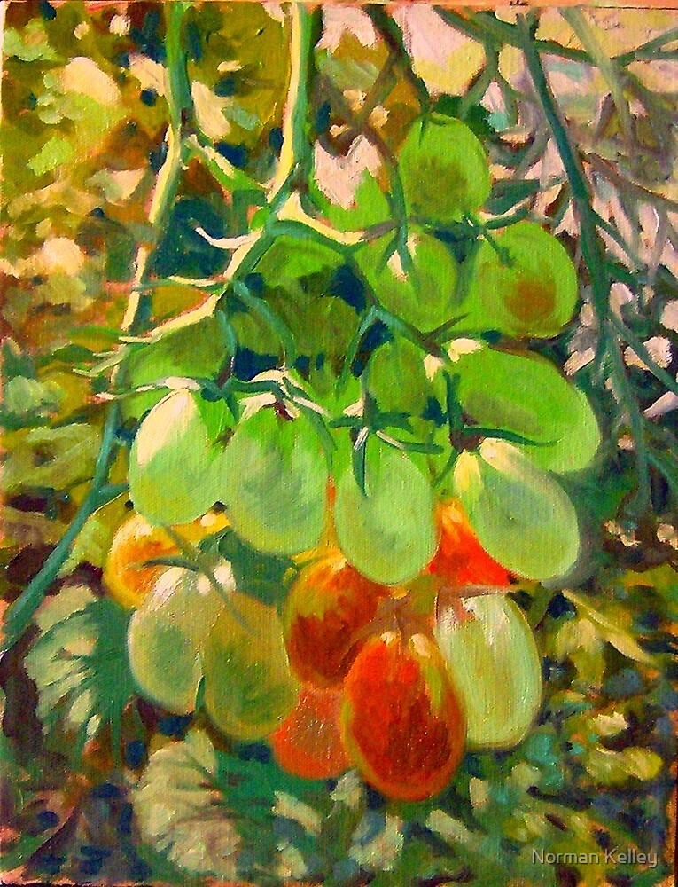 Roma Tomatoes by Norman Kelley