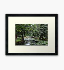 New Zealand: Queenstown Gardens Framed Print