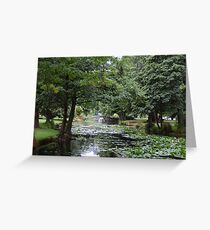 New Zealand: Queenstown Gardens Greeting Card