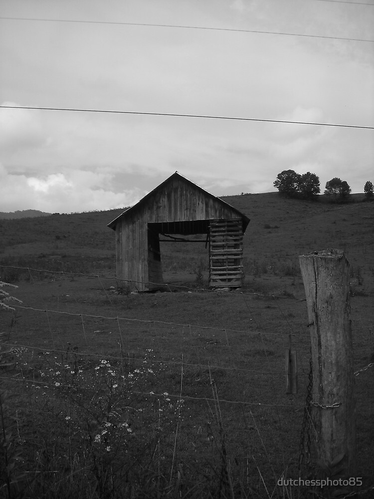 Little Shed on the Hill by dutchessphoto85