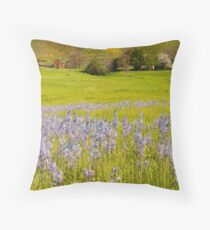 South Fork Homestead Throw Pillow