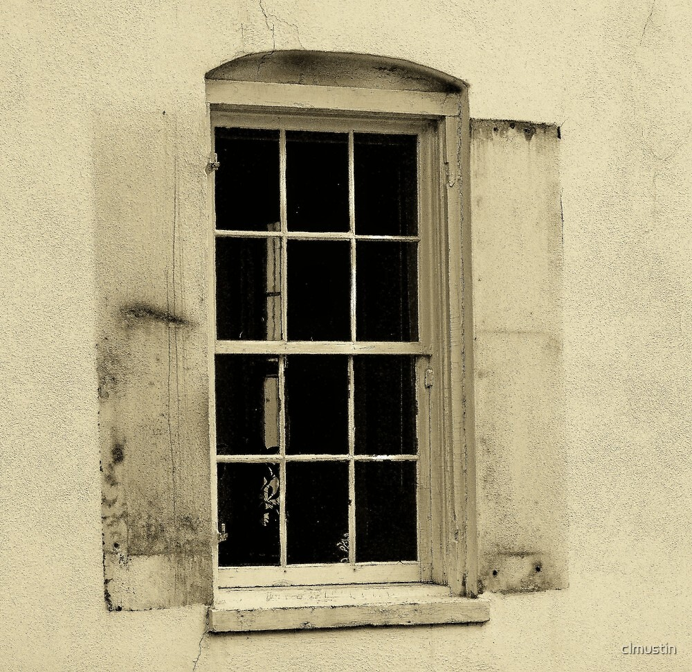 Window to The Past II by clmustin