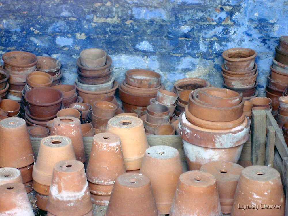 Plant Pots by Lynsey Cleaver