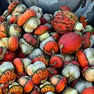 Colorful Gourds by Floyd Hopper