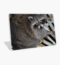 Raccoon Laptop Skin