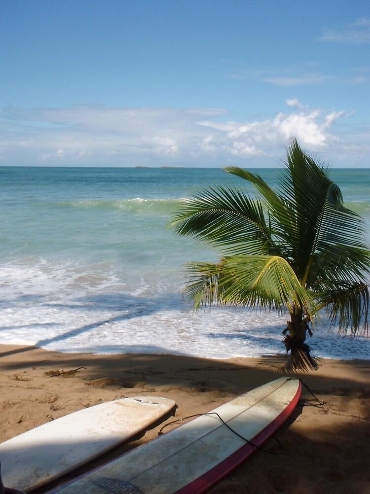 Lazy beach day by Levi Moodie
