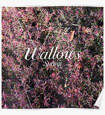 wallows spring ep  Poster