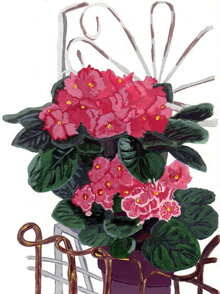 Flower Study - African Violets by Oldetimemercan