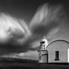 Lighthouse Paintbrush  by Michael Howard