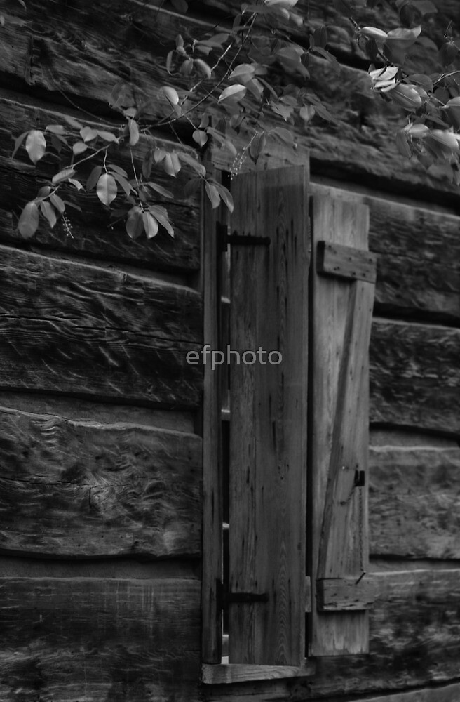 Window on old cabin by efphoto