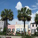 Miami livin' in South Carolina by SpaceKace
