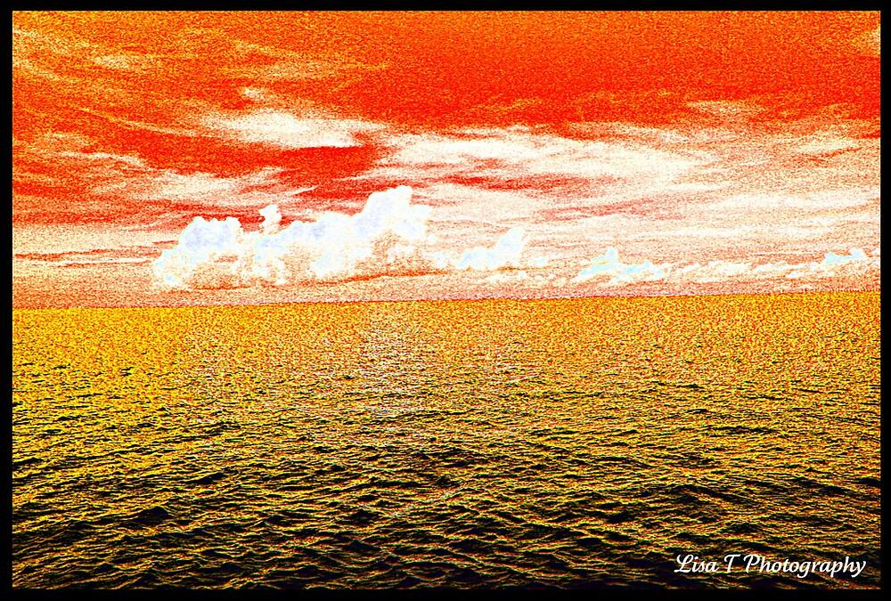 Orange Skies by Lisa  Trans
