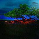 Tree& Moon by Lisa  Trans