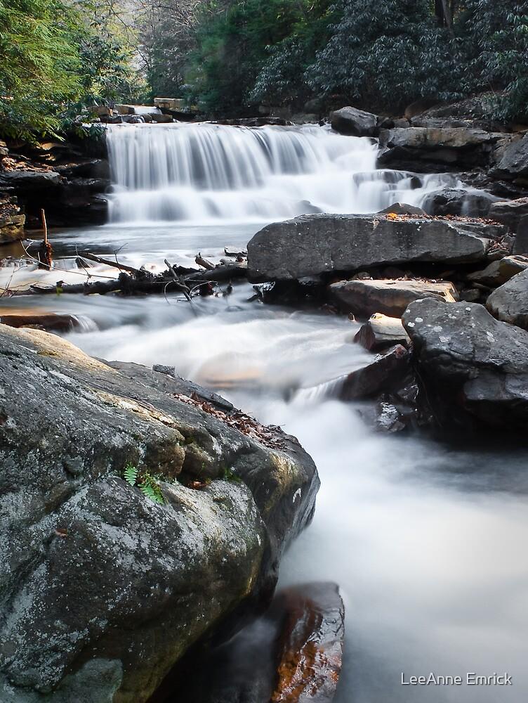 Deckers Creek Falls by LeeAnne Emrick