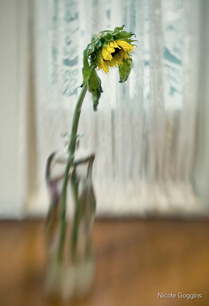 Lensbaby Still Life by Nicole Goggins