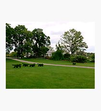 Fox and Hounds Topiary Photographic Print