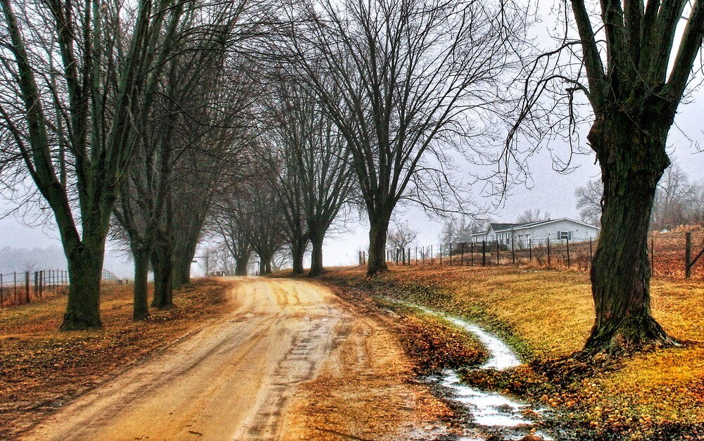 The Road Home by Nadya Johnson