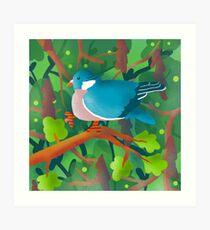 Wood Pigeon Illustration Art Print