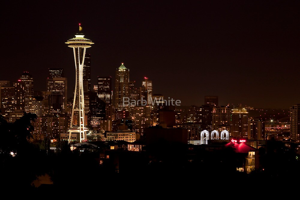 Downtown Seattle at Night by Barb White