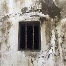 Town Gaol by Francis Drake