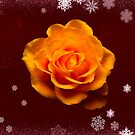 Yellow Rose On Dark Red With Glitter And Snow by hurmerinta