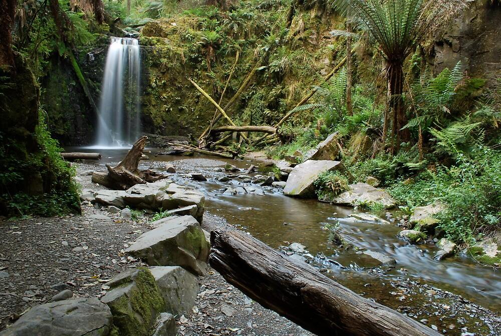 Marriners Falls - Otway Ranges by Sart