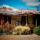 Cooper's Cottage - Lightning Ridge by Marilyn Harris