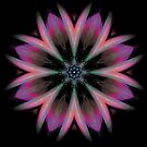 Galactic Boutonniere (fractal kaleidoscope & poem) by Rhonda Strickland