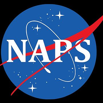 Nasa Logo Naps by idaspark