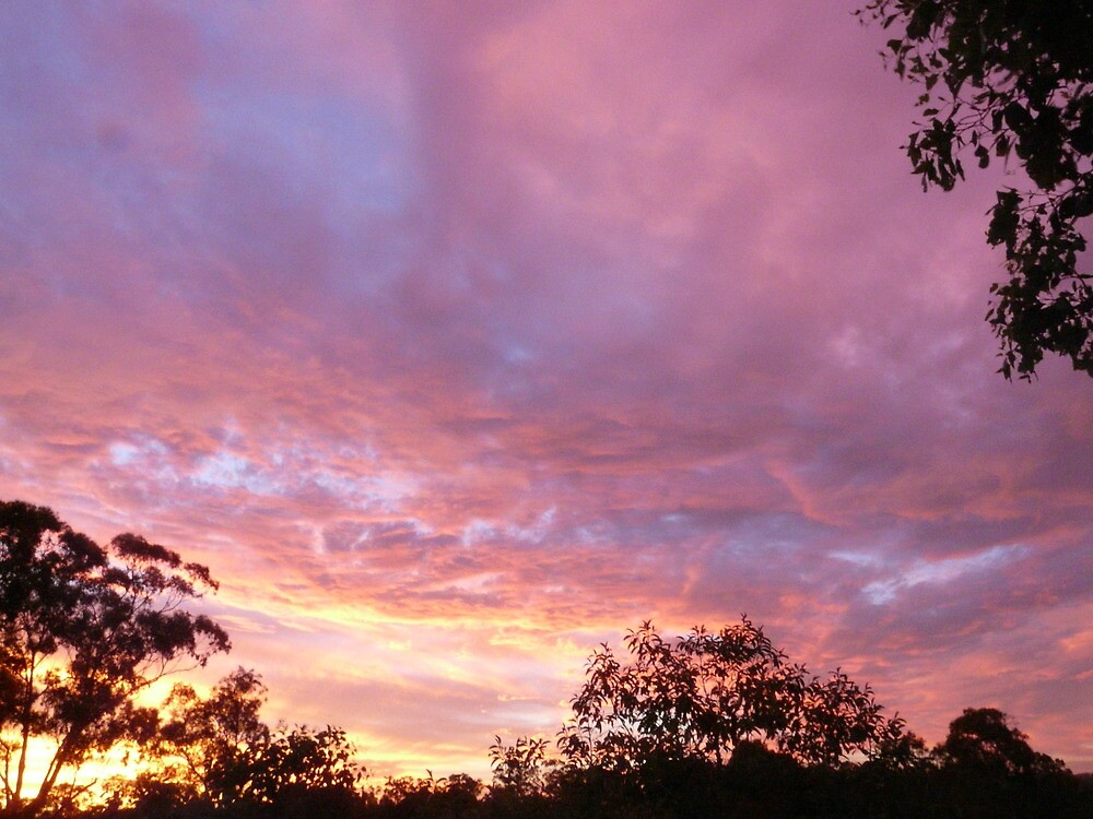 Sunset by smallan