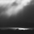 The Night begins ... by Angelika  Vogel
