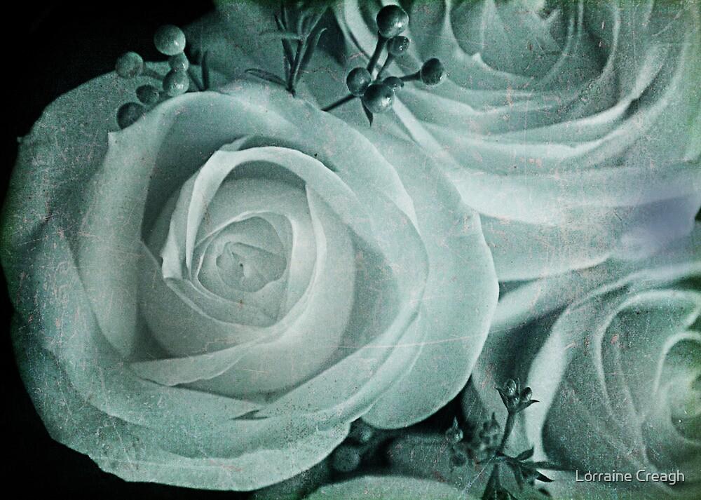 Iced Rose by Lorraine Creagh