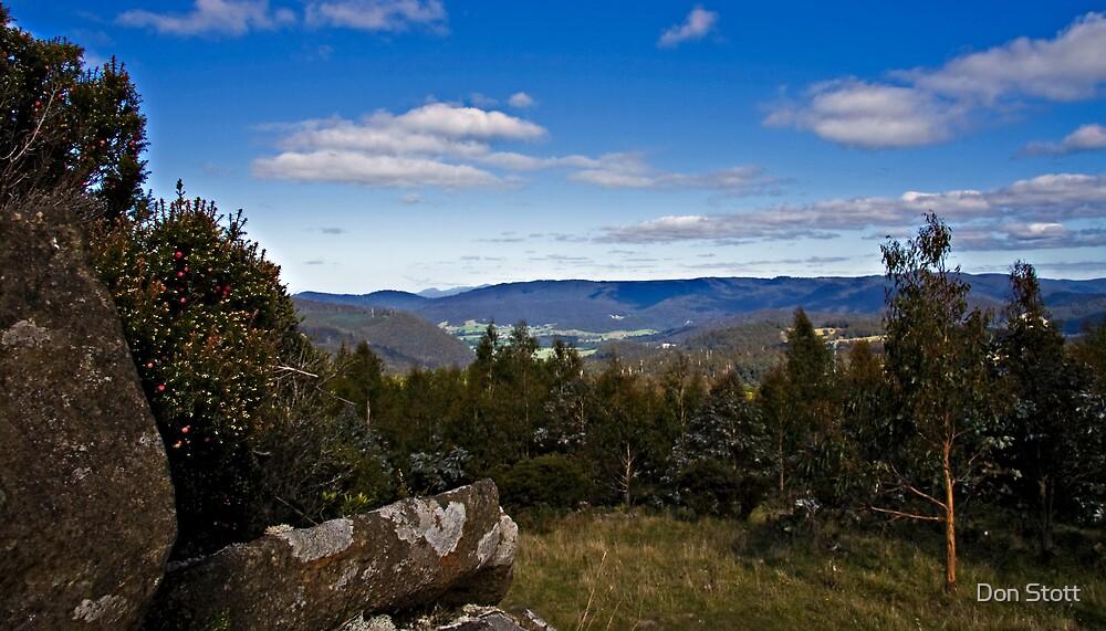Tasmanian landscape by Don Stott
