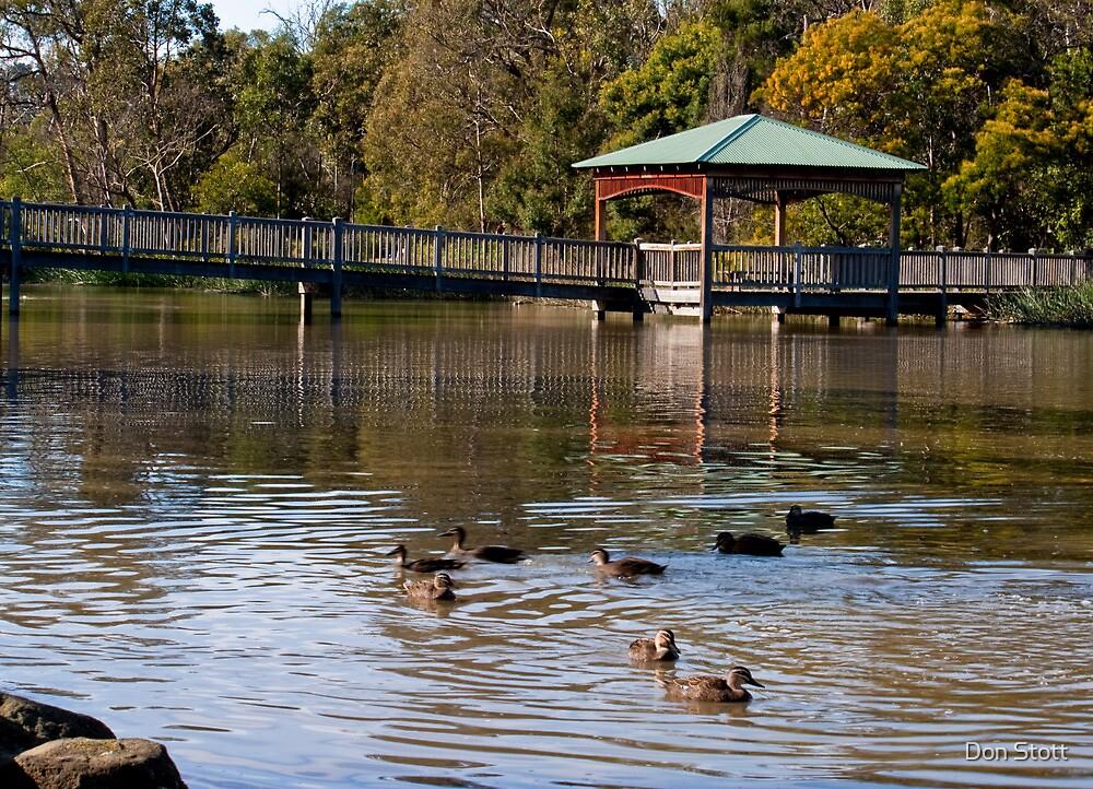 Ringwood Lake by Don Stott