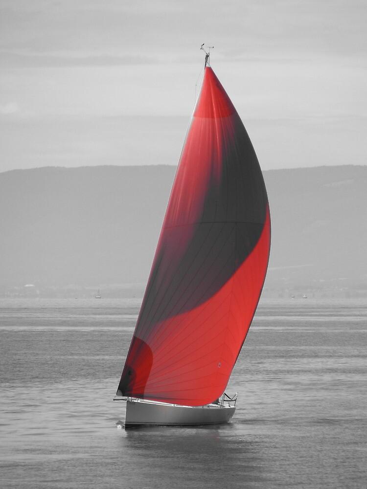 Sailing Lake Geneva by Christian Langenegger
