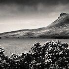 Stac Pollaidh Panorama by David Bowman