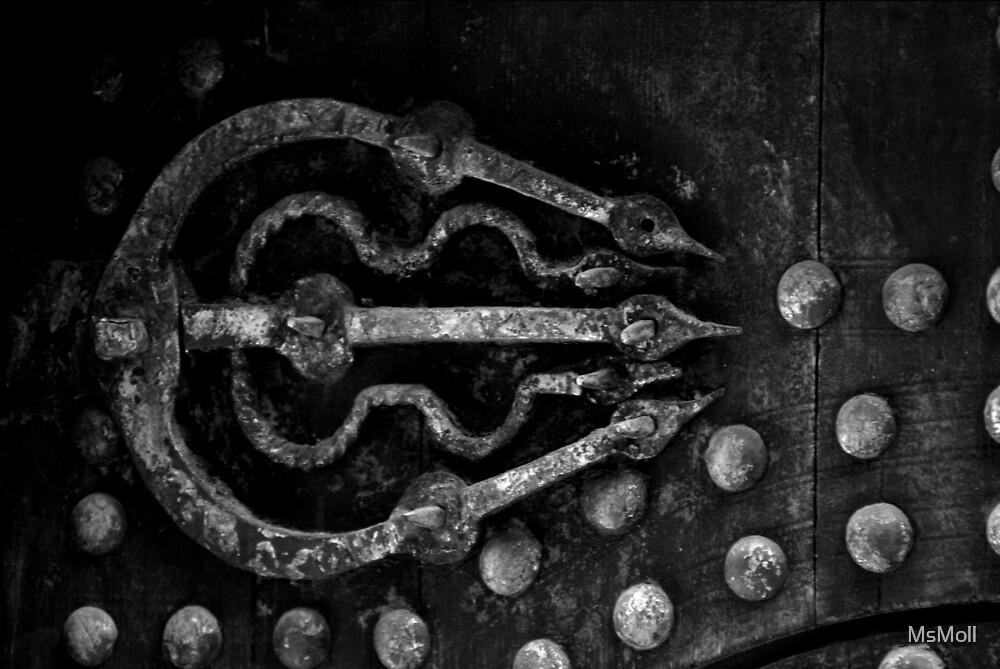Old door hinge by MsMoll