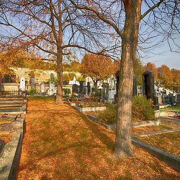 Heiligenstädter Friedhof, Vienna Austria by Mythos57