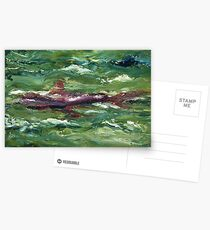 Red Shark Number One Postcards